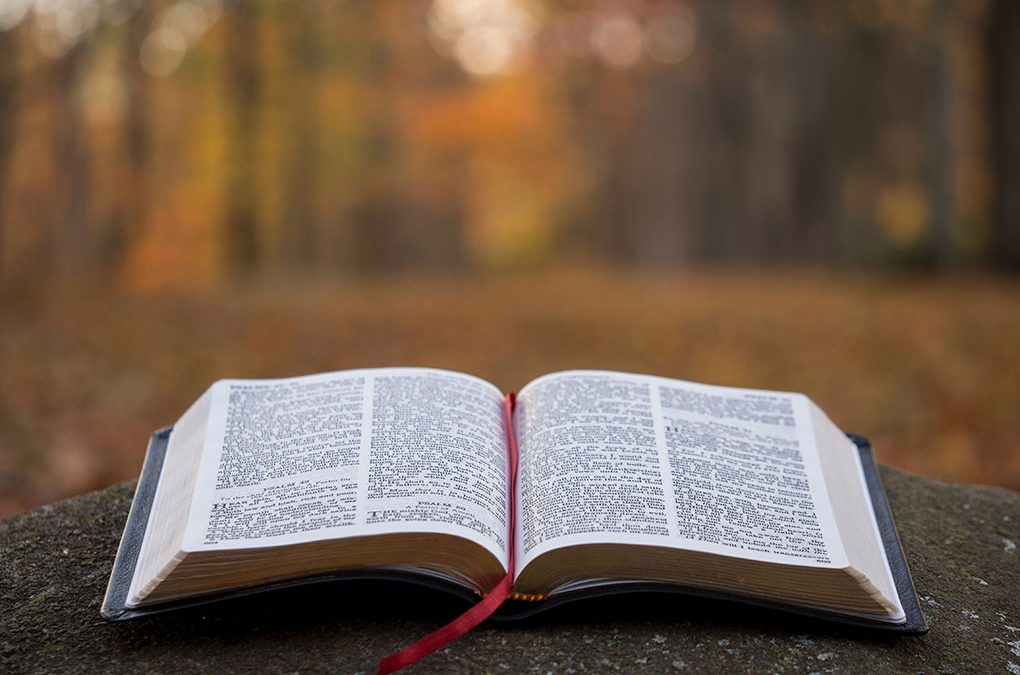The Truth About Biblical Fundamentalism